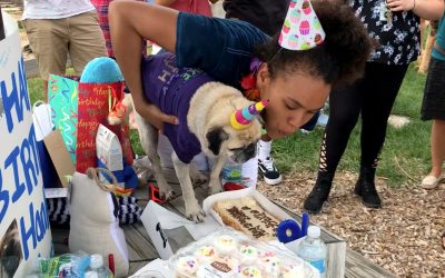 Hank the Trailblazer Celebrates 10th Birthday